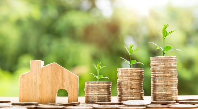 dřevěný domeček a peníze